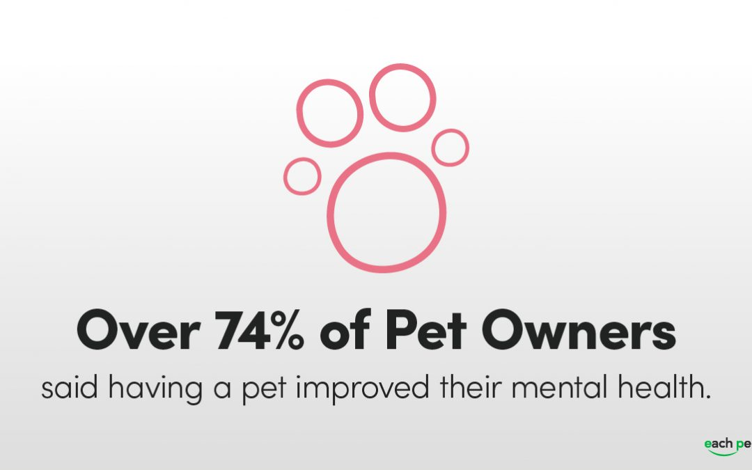 Five Reasons You Should Bring Your Pet to Work